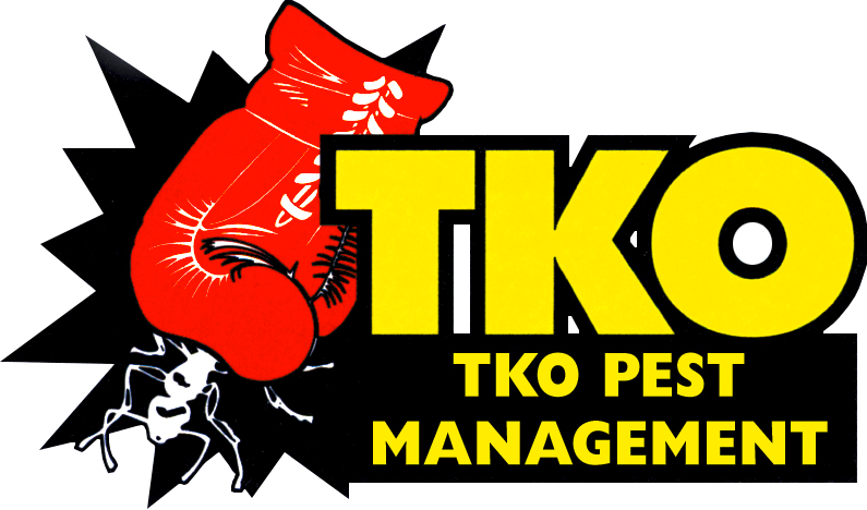 Tko Pest Management Smart Strata Body Corporate Management